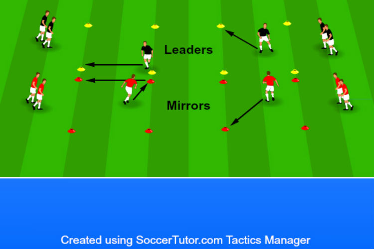Mirror Boxes - Agility Drill