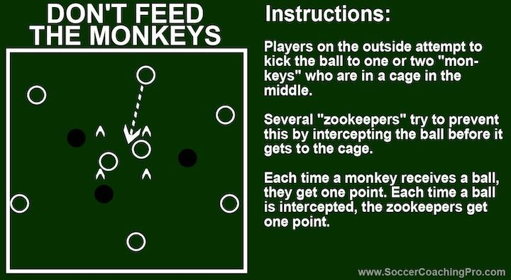 monkeys-soccer-game
